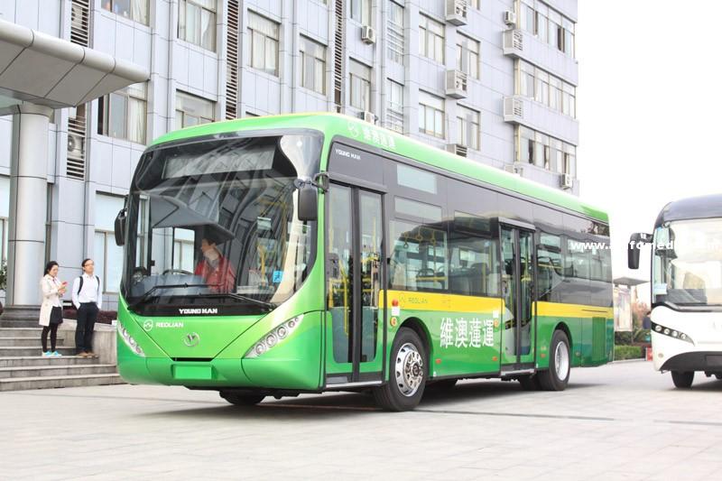 [澳門] 澳門最大巴士公司申請破產