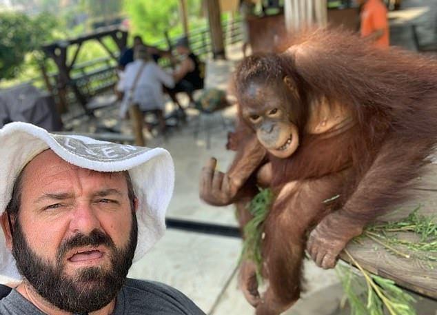 [新聞] 旅客合照忘給謝禮 紅毛猩猩「比中指」雙眼怒瞪