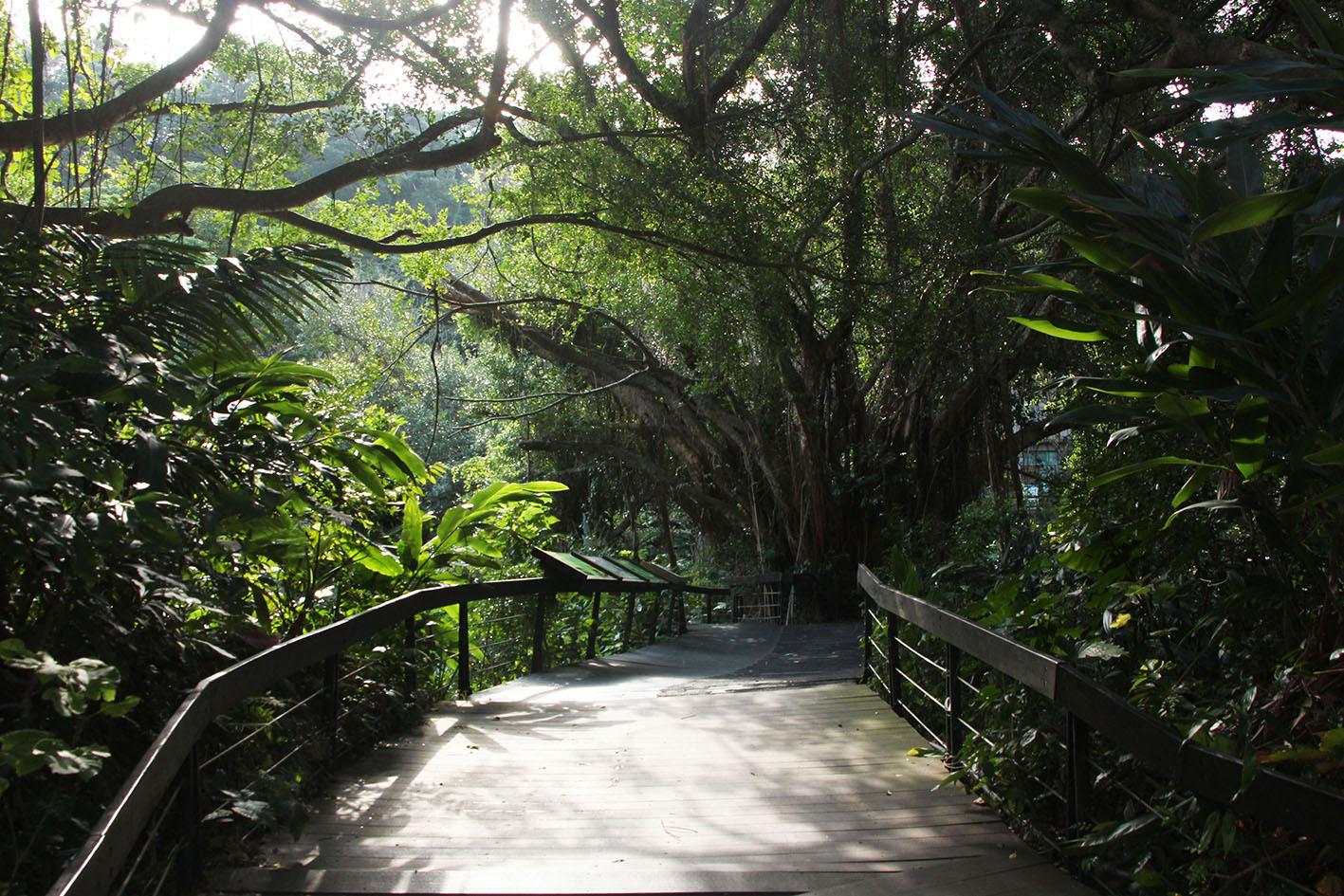 台灣|台北市6景點獲友善環境認證!穆斯林旅遊更方便