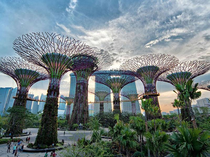 新加坡自由行~濱海灣花園