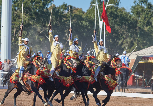 精彩刺激的摩洛哥「奔馬秀」