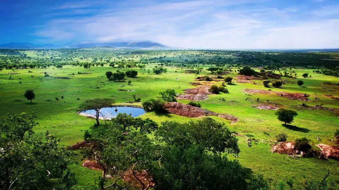 非洲旅遊!睡在野生動物的棲息地,落日晚餐看非洲五霸