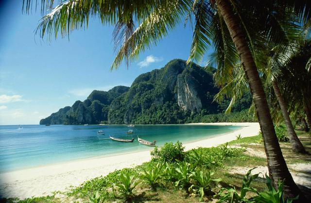 冬天,一定要去泰國!泰國有哪些好玩的?