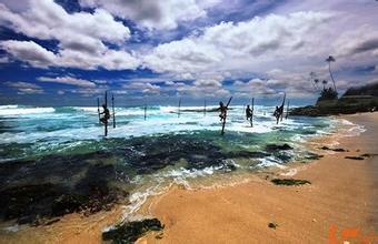 斯里蘭卡旅遊攻略:一次搞懂簽證機票、景點治安,想去絕不能錯過這篇!